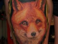 Цветная татуировка головы лисы на плече