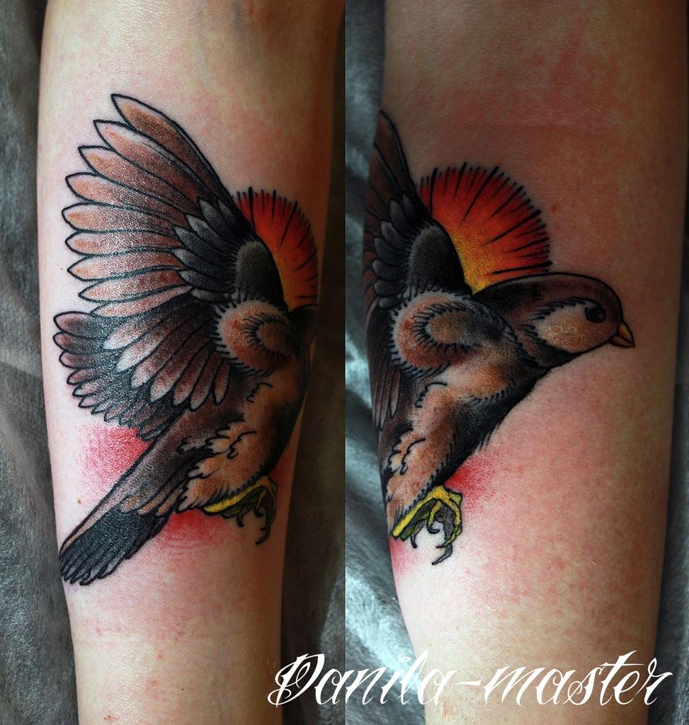 традиционная тату. художественная тату. тату воробья, индивидуальное тату, тату птицы, тату животные, traditional tattoo, artist tattoo, tattoo animals, tattoo birds, tattoo sparrow