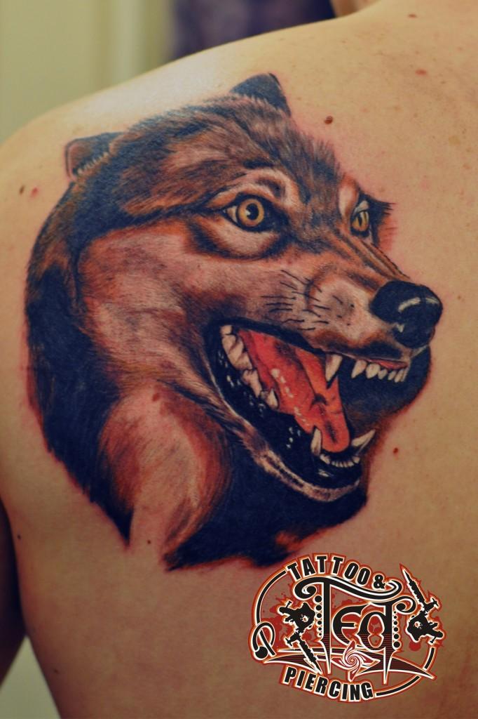 татуировка оскала волка. мастер Тимур (Ted)