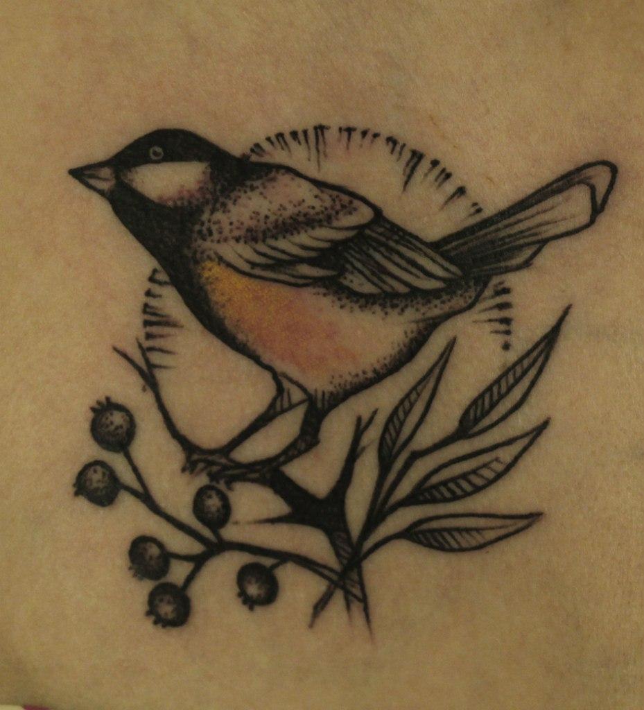 Художественная татуировка Птичка. Акция. Мастер Александра Табунс