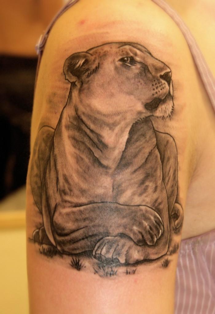 """Художественная Татуировка """"Львица"""". Мастер Павел Заволока. Расположение: плечо."""