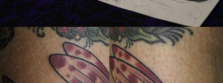 Художественная татуировка «Летучая рыба». Мастер Валера Моргунов. Расположение: нога
