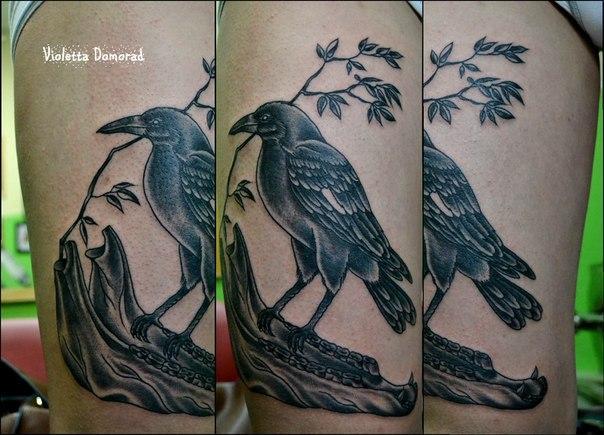 Татуировка Ворон, мастер Виолетта Доморад.