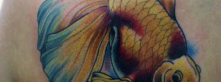 Художественная татуировка Золотая рыбка. Данила — Мастер.