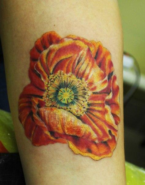 Художественная татуировка «Мак» от Андрея Бойцева