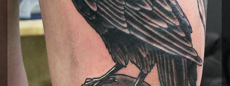 Художественная татуировка «Ворон». Мастер Павел Заволока.