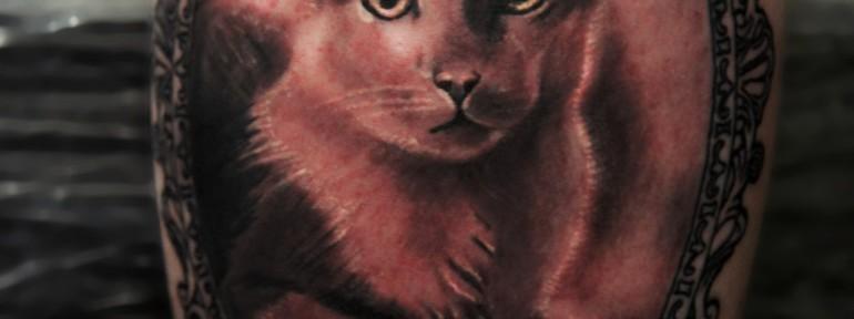 Художественная татуировка «Кот» от Александра Морозова