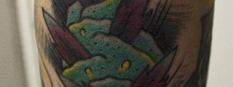 Художественная татуировка «Шишка». Мастер Вова Snoop.