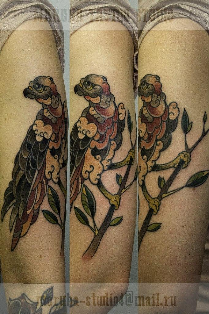 Художественная татуировка «Сокол». Мастер Валера Моргунов.