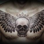 Все значения татуировок с крыльями — подойдет ли тату с крыльями вам?