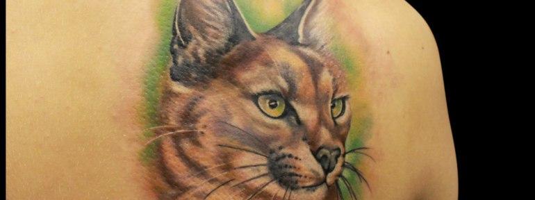 Художественная татуировка «Рысь». Мастер Мадина Mary Jane.
