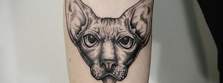 Художественная татуировка «Кот». Мастер Инесса Кефир.
