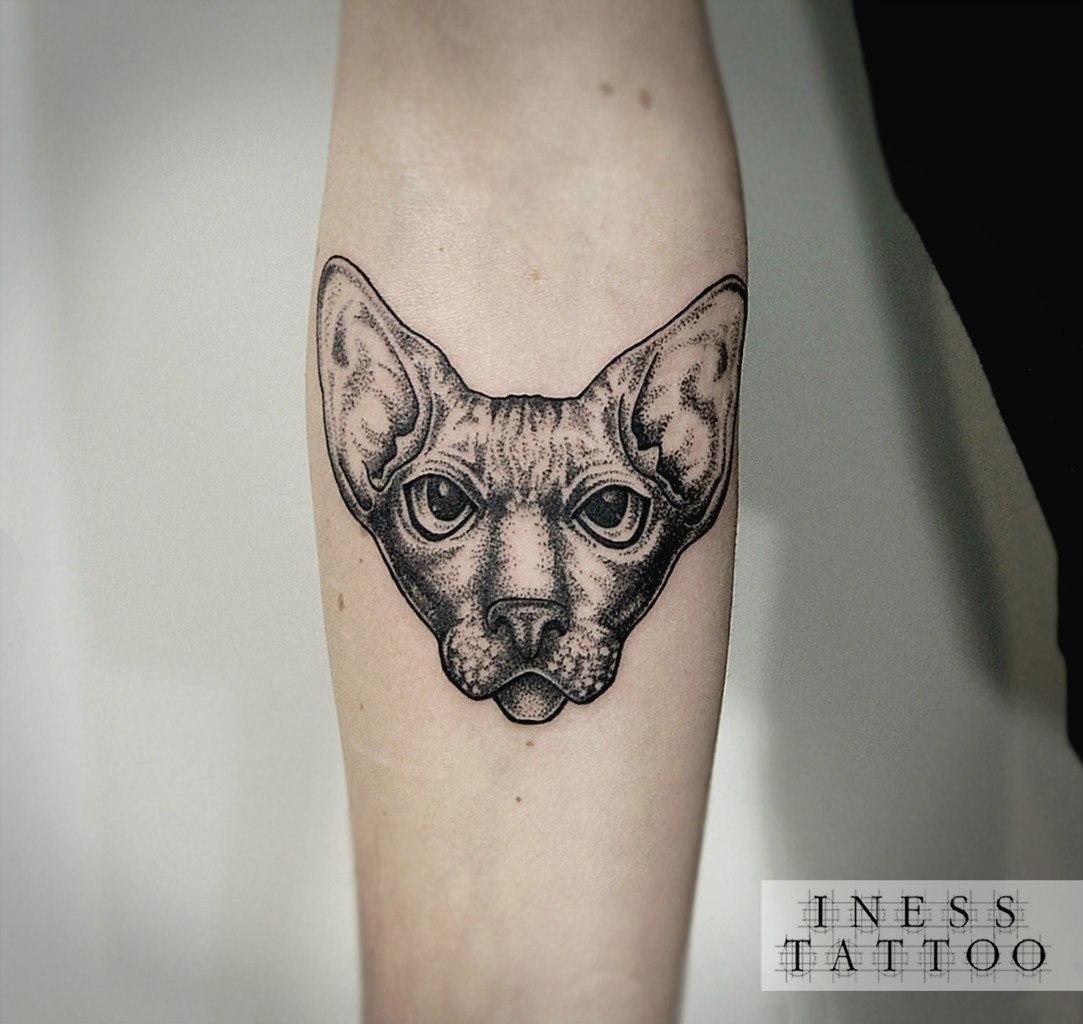 Художественная татуировка «Кот». Мастер Инесса Кефир. По собственному дизайну. Расположение: предплечье. Время работы: 3 часа.