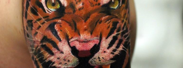 Художественная татуировка «Тигр», мастер Александр Морозов