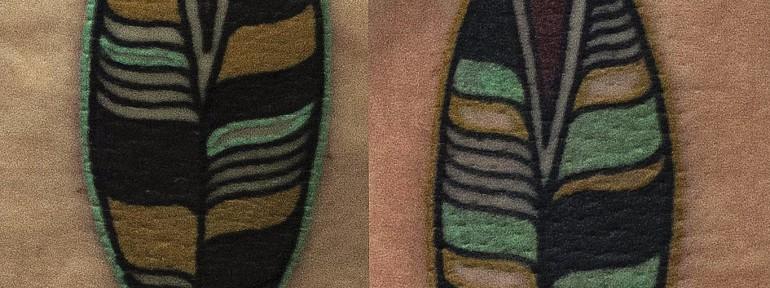Художественная татуировка «Перья» от Валеры
