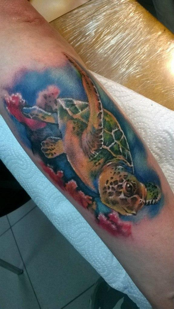 Художественная татуировка «Черепаха». Мастер — Анна Корь