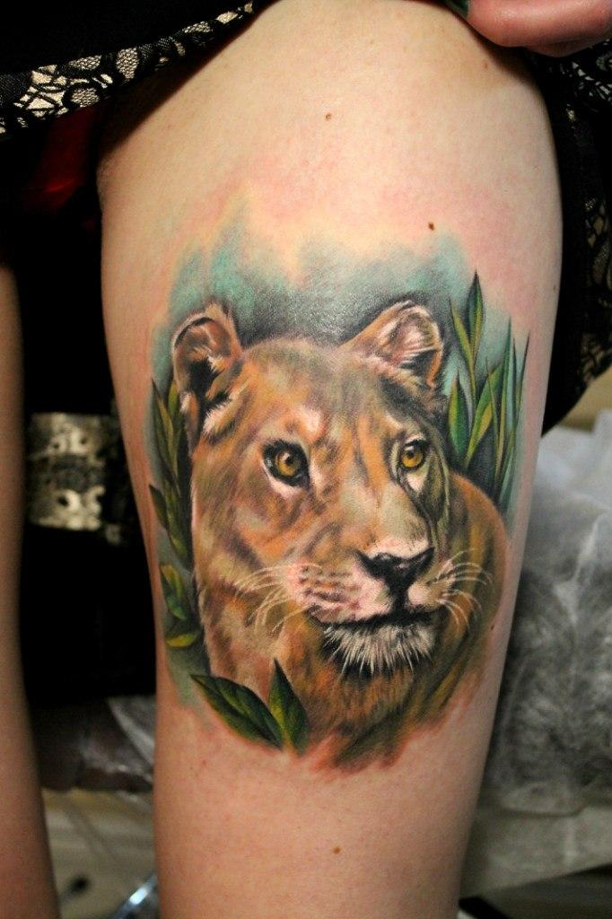 Художественная татуировка «Львица». Мастер — Анна Корь