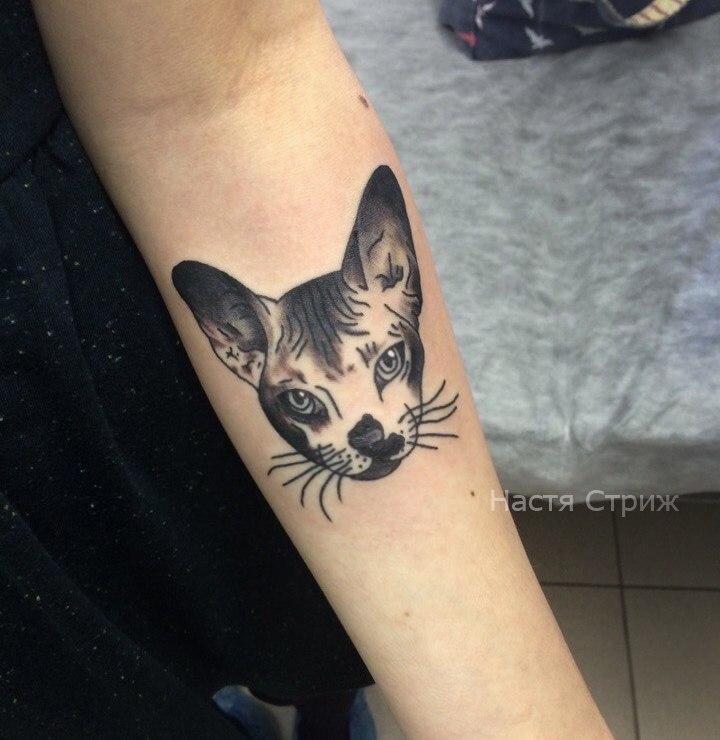 Художественная татуировка «Котик». Мастер Настя Стриж.