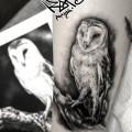 Художественная татуировка «Сова». Мастер — Анна Корь. Расположение — голень. Время работы — 2 часа. часа.