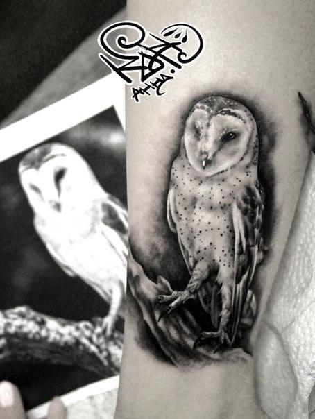 Художественная татуировка «Сова». Мастер — Анна Корь.