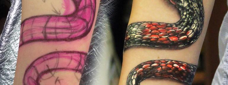 Художественная татуировка «Змея». Мастер Ян Енот.