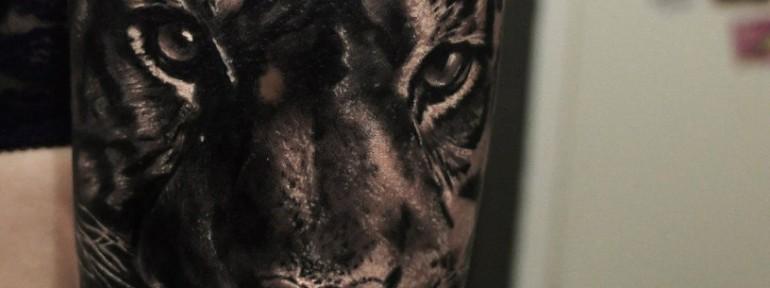 Художественная татуировка «Тигр» от Александра Морозова