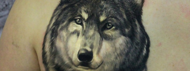 Художественная татуировка «Волк». Мастер Ян Енот.