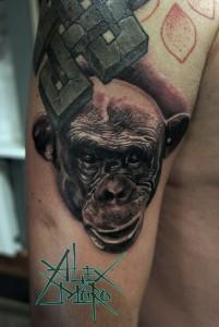 Художественная татуировка «Обезьяна» в исполнении мастера Александра Морозова. Место нанесения — плечо, время работы — около 3 часов