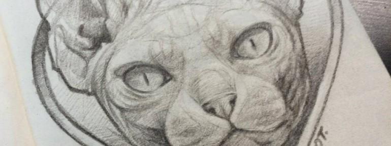Свободный эскиз «Кот». Мастер Ян Енот.