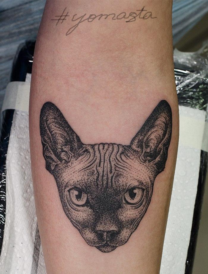 Художественная татуировка «Кот». Мастер Даниил Костарев.