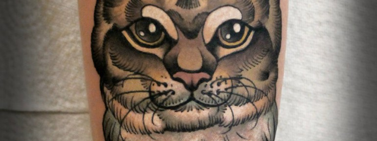 Художественная татуировка «Котик». Мастер- Анна Корь