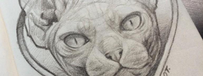 Свободный эскиз «Кот». Мастер Ян Енот