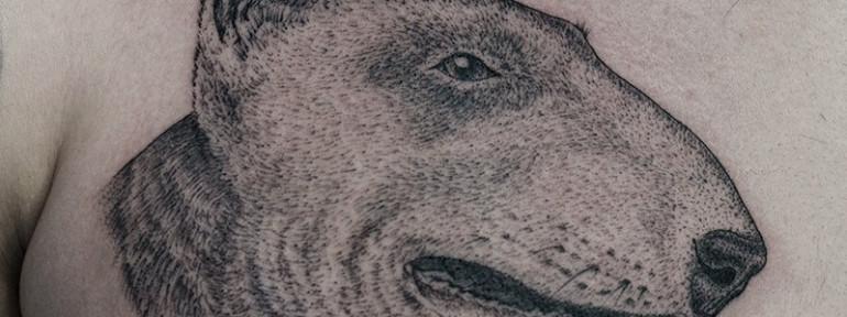 Художественная татуировка «Пёс». Мастер Даня Костарев