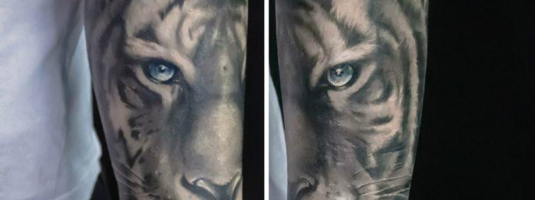 Художественная татуировка «тигр». Мастер Алексей Быковский.