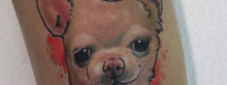 Художественная татуировка «Пёс». Мастер Дима Поликарпов