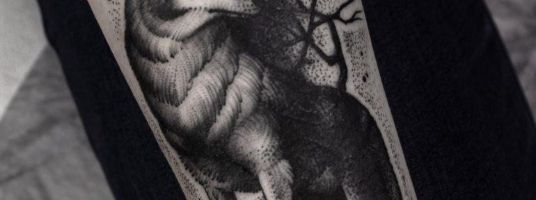 Художественная татуировка «Волк». Мастер- Анна Корь.
