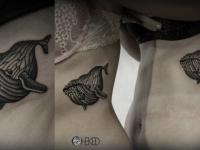 Татуировка кашалот на боку