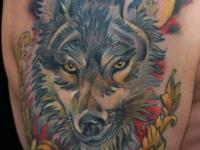 Татуировка волк на плече