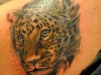 Татуировка голова ягуара