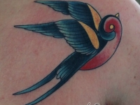 Татуировка птица на груди