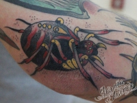 Татуировка паук на локте