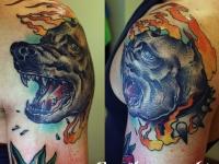 Татуировка собака на плече