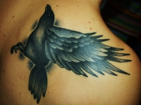 Татуировка ворон на лопатке