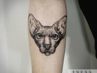 Татуировка голова сфинкса