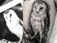 Татуировка совы на руке