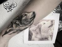 Татуировка головы собаки на руке