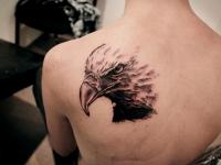 Татуировка голова орла на лопатке