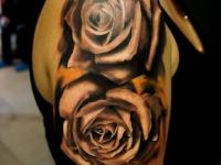 Татуировка две розы на плече
