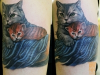 Татуировка кошка с котенком