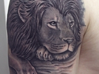 Татуировка голова льва на плече